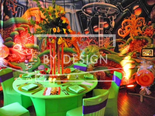 Sweet 16 Theme Party. Photography, BBD