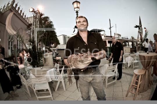 Aligators & More, , Photography, Jeff Horton