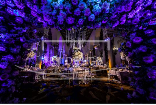 Sparkly Reception, Photography, Munoz