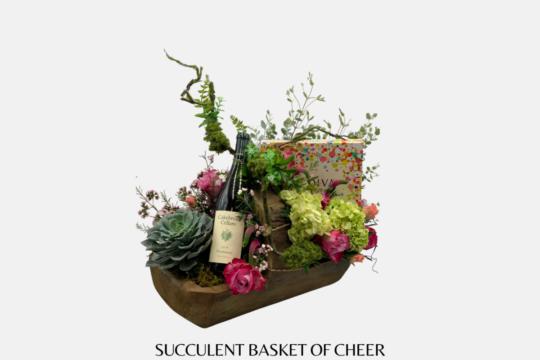 Succulent Basket of Cheer