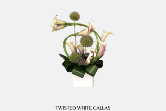 Twisted White Calas