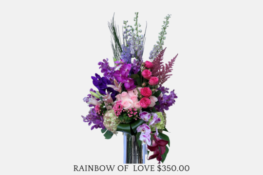$350 Rainbow of Love